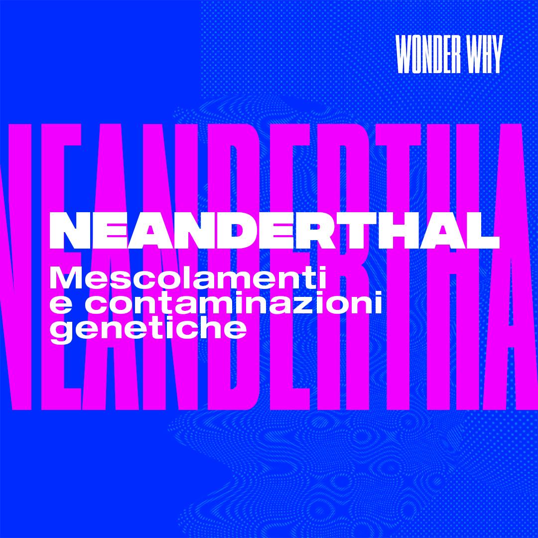 Neanderthal e Sapiens