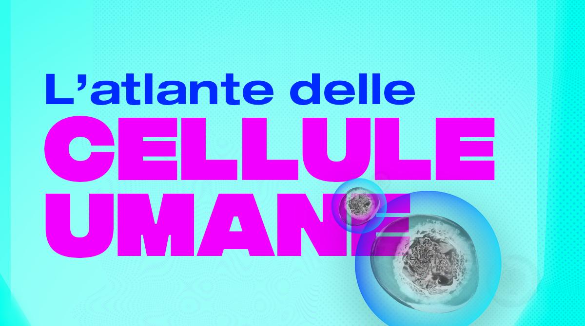 atlante delle cellule umane human cell atlas
